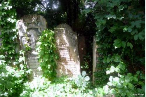 Czernowitz Friedhof Kathrin Power
