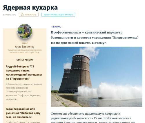 nukleare Köchin - Titelbild