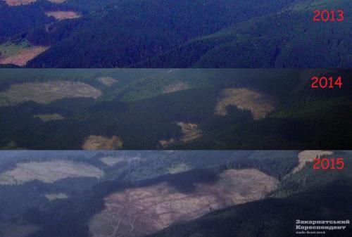 Abholzungen in den Karpaten Vergleich: 2013/2014/2015