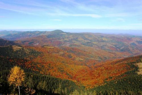 Herbstaussicht in den Gorgany
