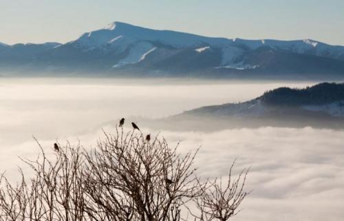 Winter in den ukrainischen Karpaten 15