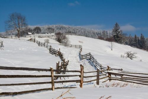 Winter in den ukrainischen Karpaten 1