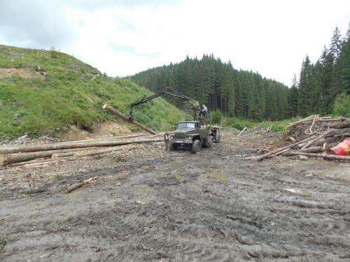 schweres Gerät in der ukrainischen Holzwirtschaft